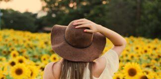 tiamina słonecznik pole kwiaty